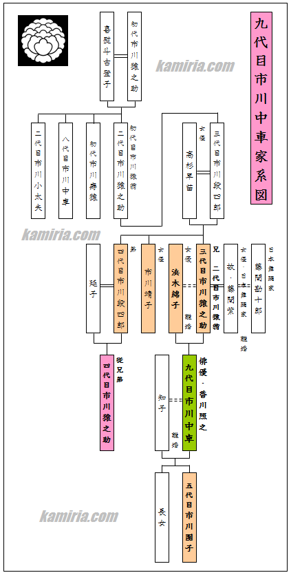 市川中車(香川照之)市川團子家系図