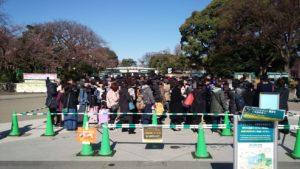 上野動物園3月17日土曜日表門混雑状況